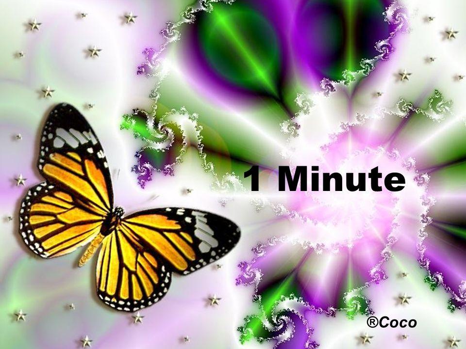 1 Minute ®Coco