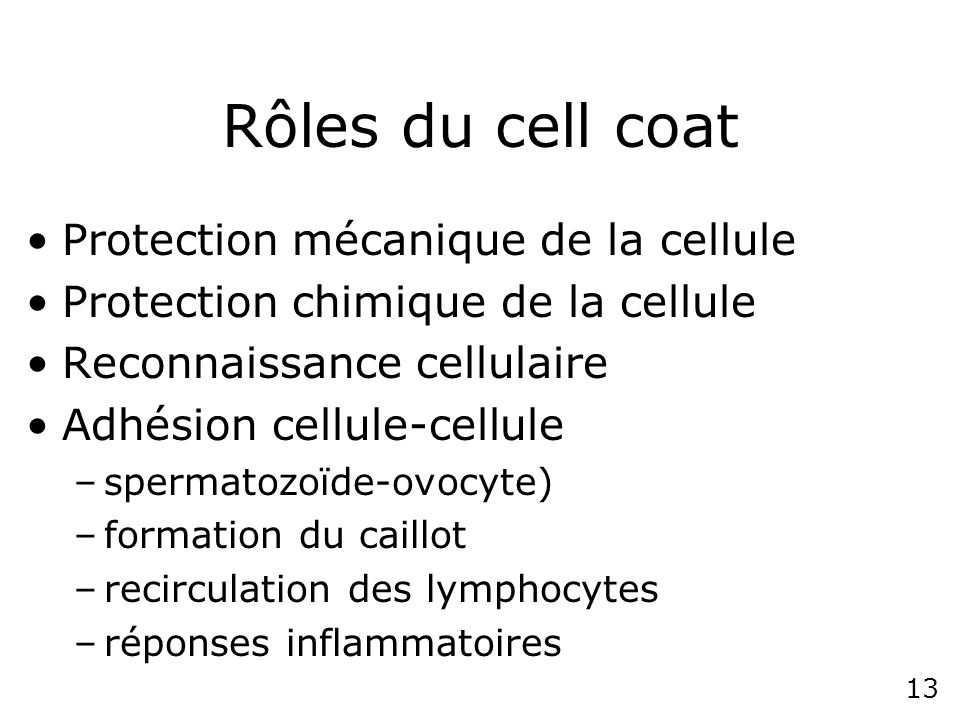 Rôles du cell coat Protection mécanique de la cellule