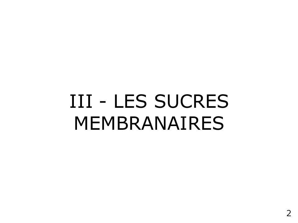 III - LES SUCRES MEMBRANAIRES