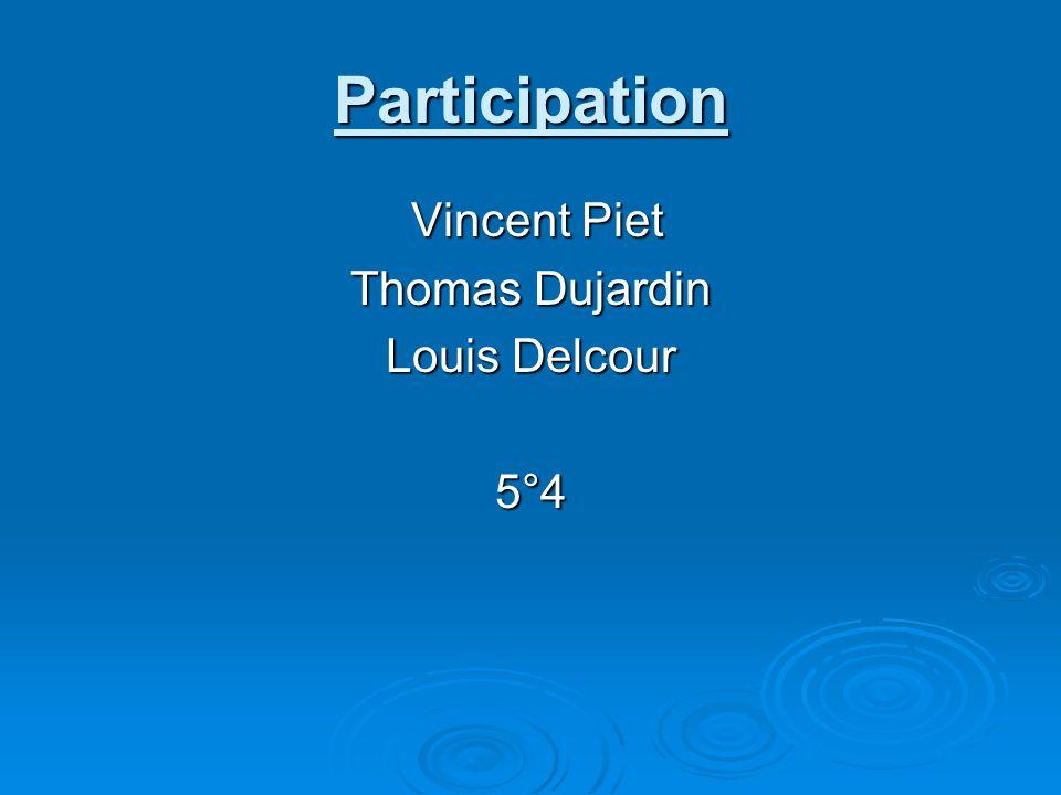 Participation Vincent Piet Thomas Dujardin Louis Delcour 5°4