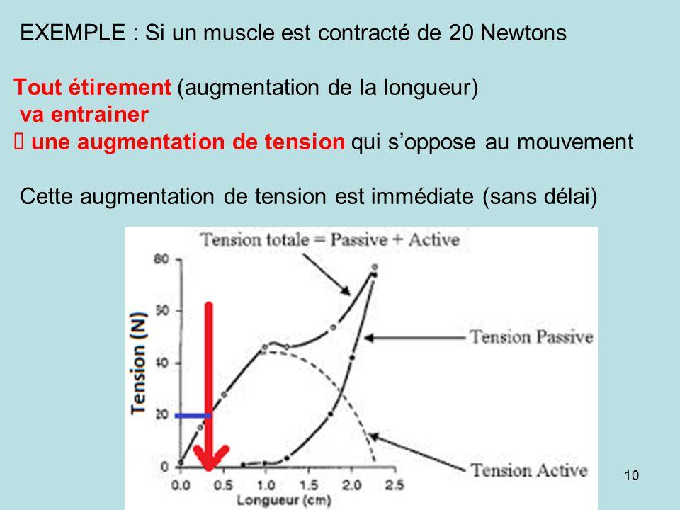 EXEMPLE : Si un muscle est contracté de 20 Newtons Tout étirement (augmentation de la longueur) va entrainer è une augmentation de tension qui s'oppose au mouvement Cette augmentation de tension est immédiate (sans délai)