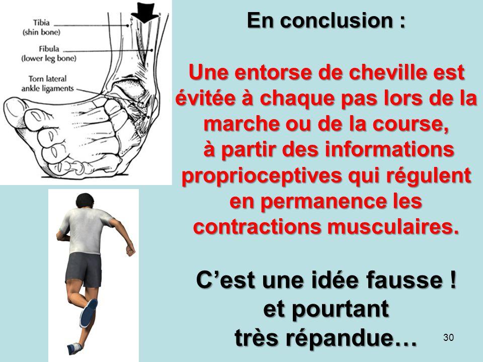 En conclusion : Une entorse de cheville est évitée à chaque pas lors de la marche ou de la course, à partir des informations proprioceptives qui régulent en permanence les contractions musculaires.