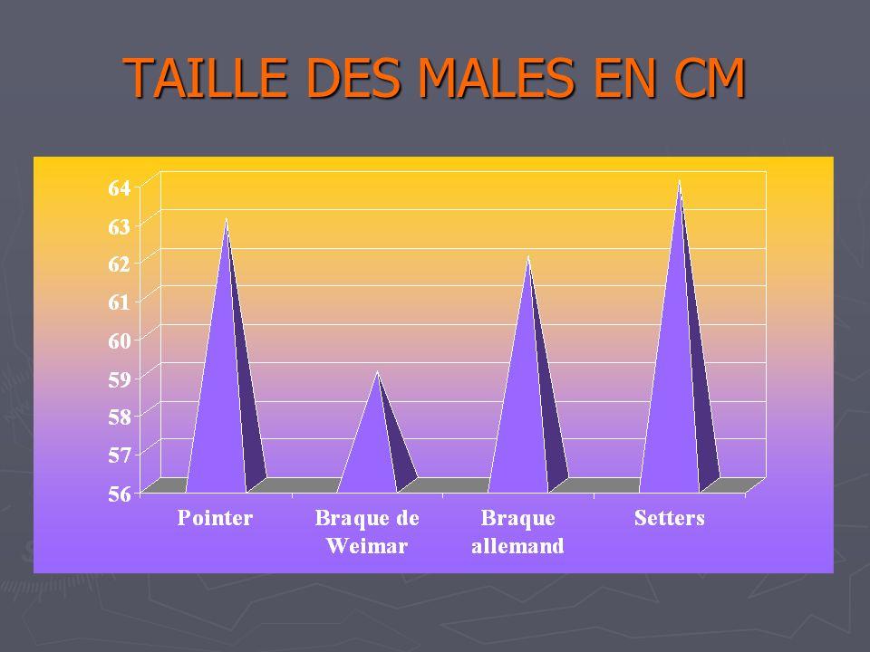 TAILLE DES MALES EN CM