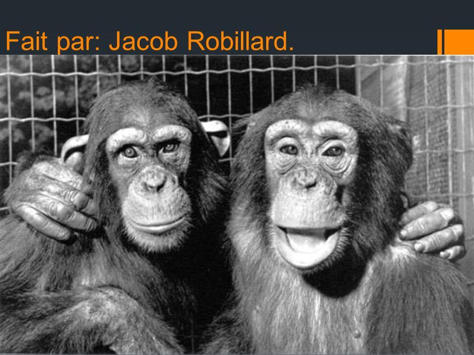Fait par: Jacob Robillard.