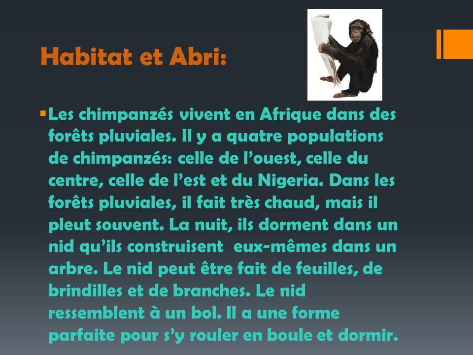 Habitat et Abri: