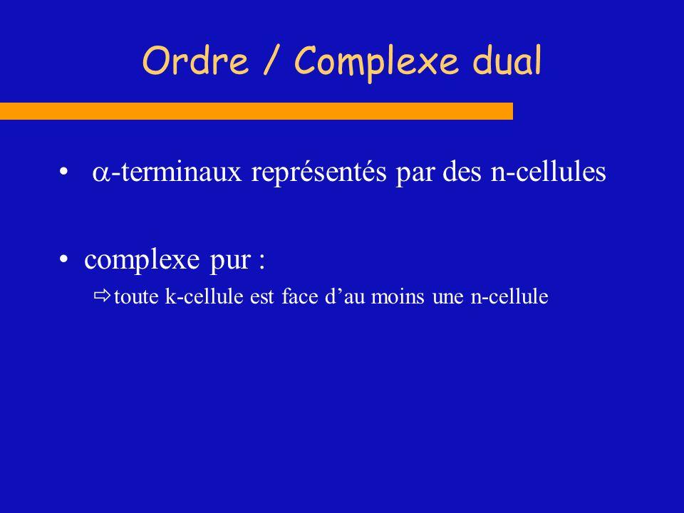 Ordre / Complexe dual -terminaux représentés par des n-cellules