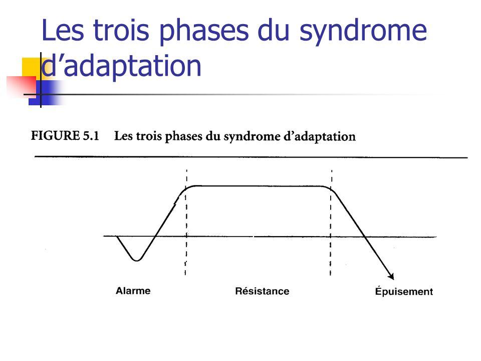 Les trois phases du syndrome d'adaptation