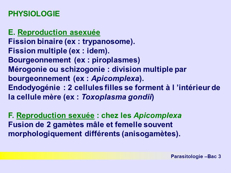 E. Reproduction asexuée Fission binaire (ex : trypanosome).