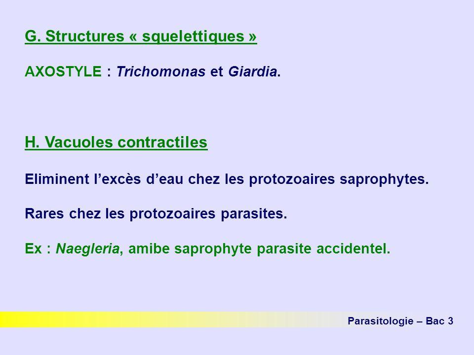 G. Structures « squelettiques »