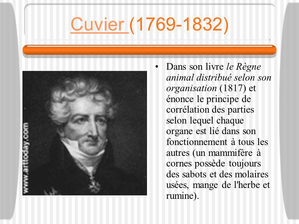 Cuvier (1769-1832)