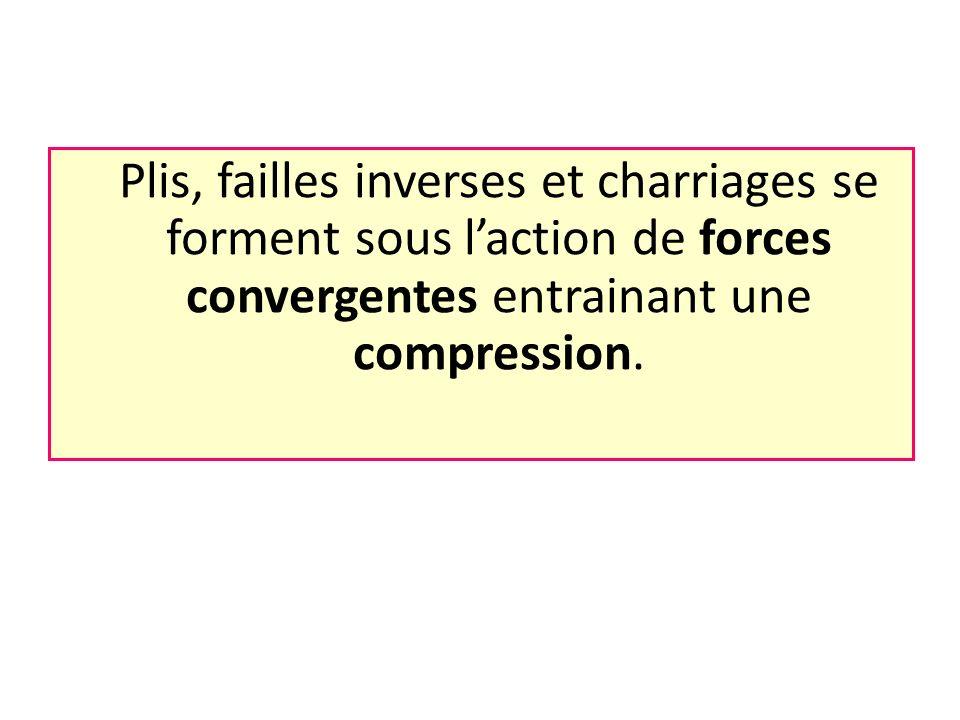 Plis, failles inverses et charriages se forment sous l'action de forces convergentes entrainant une compression.