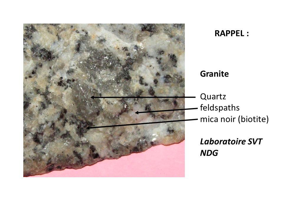 RAPPEL : Granite Quartz feldspaths mica noir (biotite) Laboratoire SVT NDG