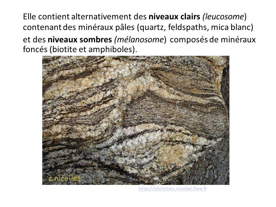 Elle contient alternativement des niveaux clairs (leucosome) contenant des minéraux pâles (quartz, feldspaths, mica blanc)
