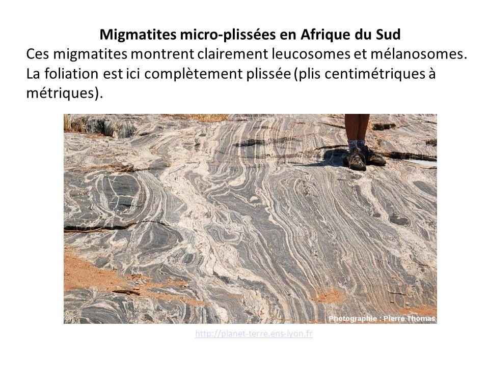 Migmatites micro-plissées en Afrique du Sud
