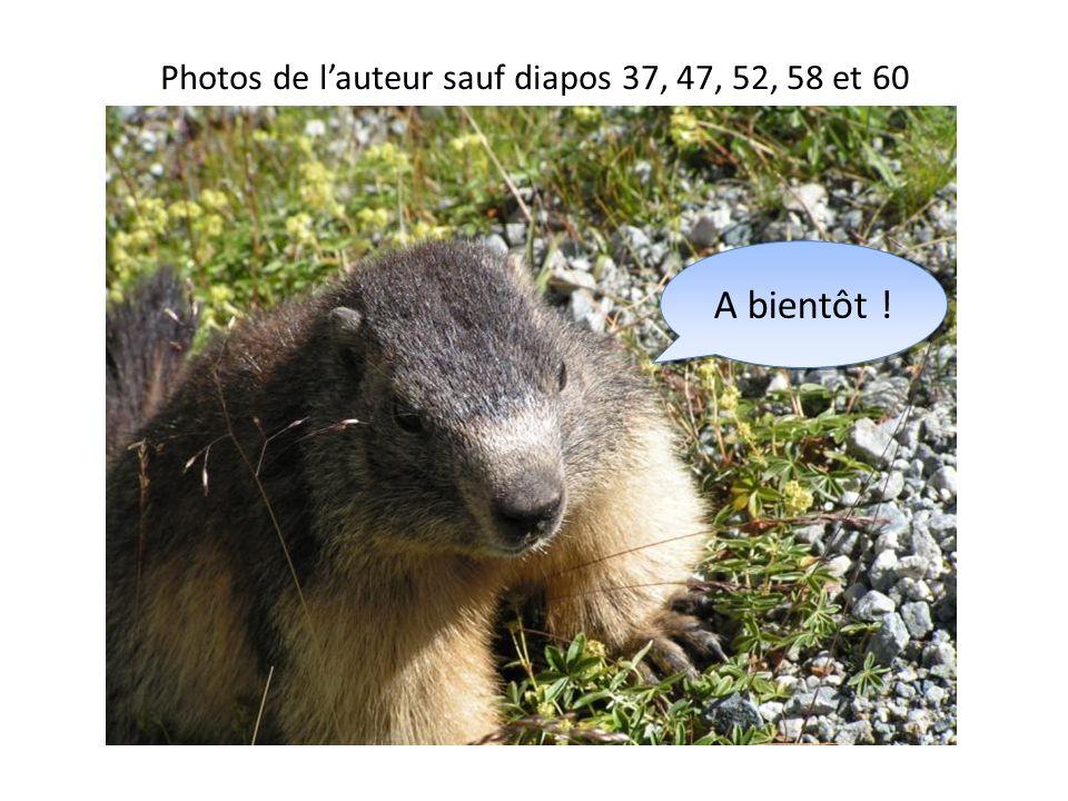 Photos de l'auteur sauf diapos 37, 47, 52, 58 et 60