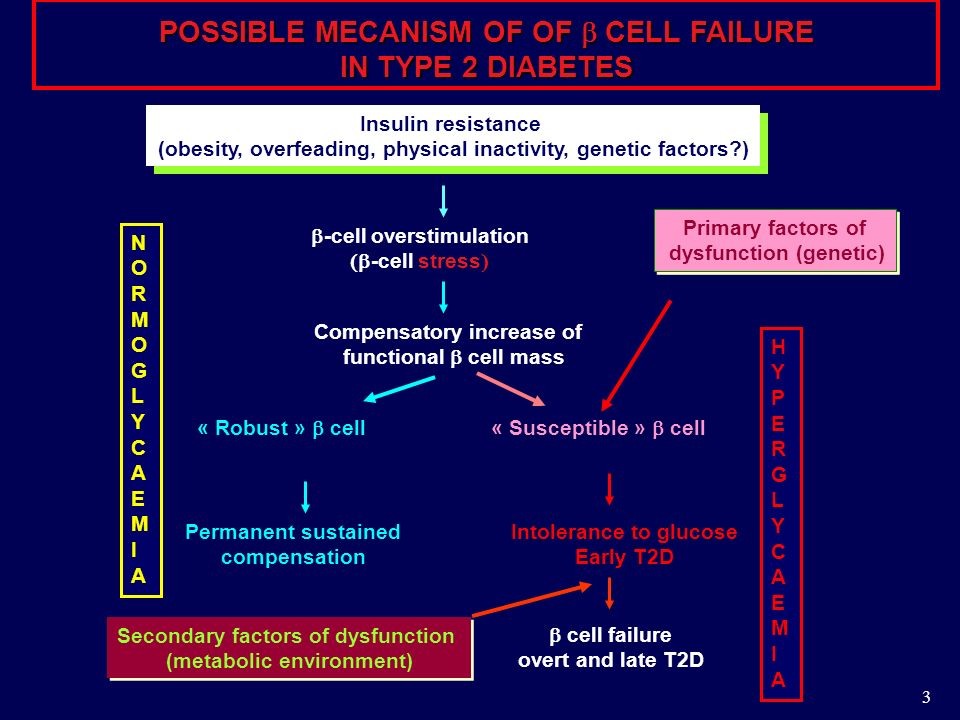 POSSIBLE MECANISM OF OF  CELL FAILURE IN TYPE 2 DIABETES