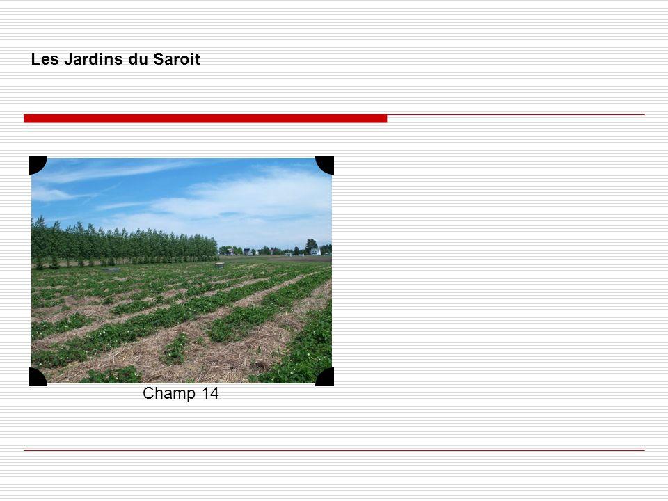 Les Jardins du Saroit Champ 14