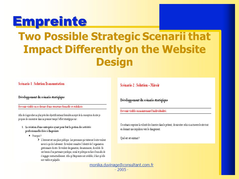 Two Possible Strategic Scenarii that Impact Differently on the Website Design