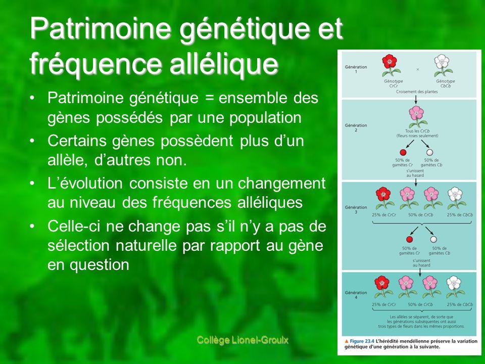 Patrimoine génétique et fréquence allélique