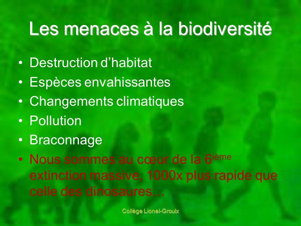 Les menaces à la biodiversité