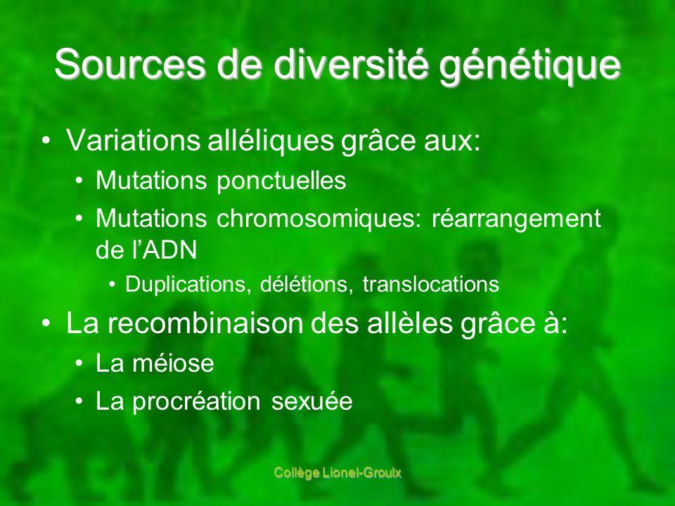 Sources de diversité génétique