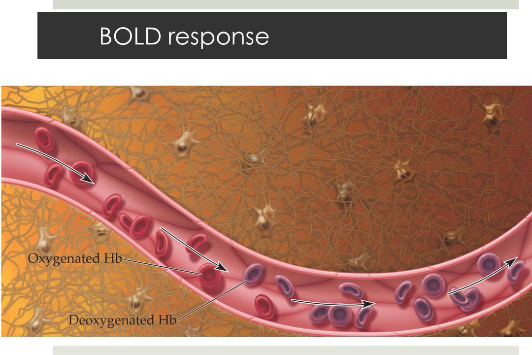 BOLD response