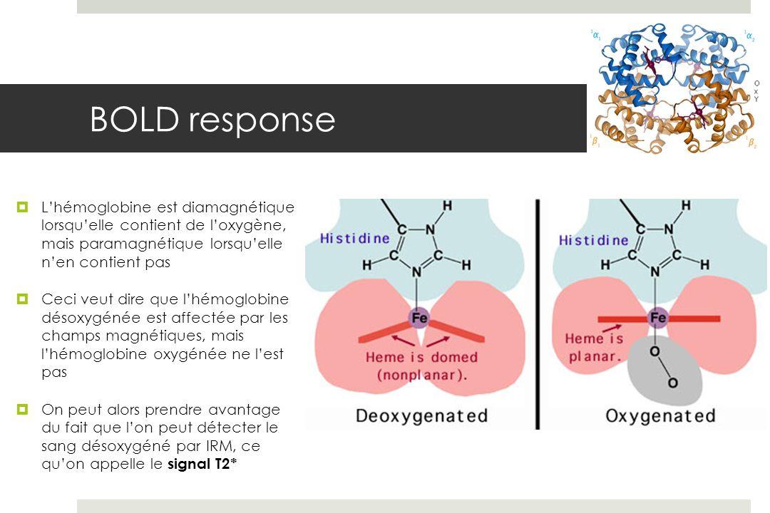 BOLD response L'hémoglobine est diamagnétique lorsqu'elle contient de l'oxygène, mais paramagnétique lorsqu'elle n'en contient pas.