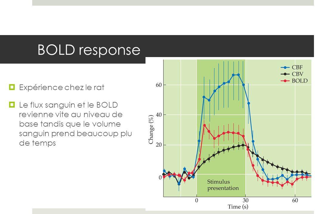 BOLD response Expérience chez le rat