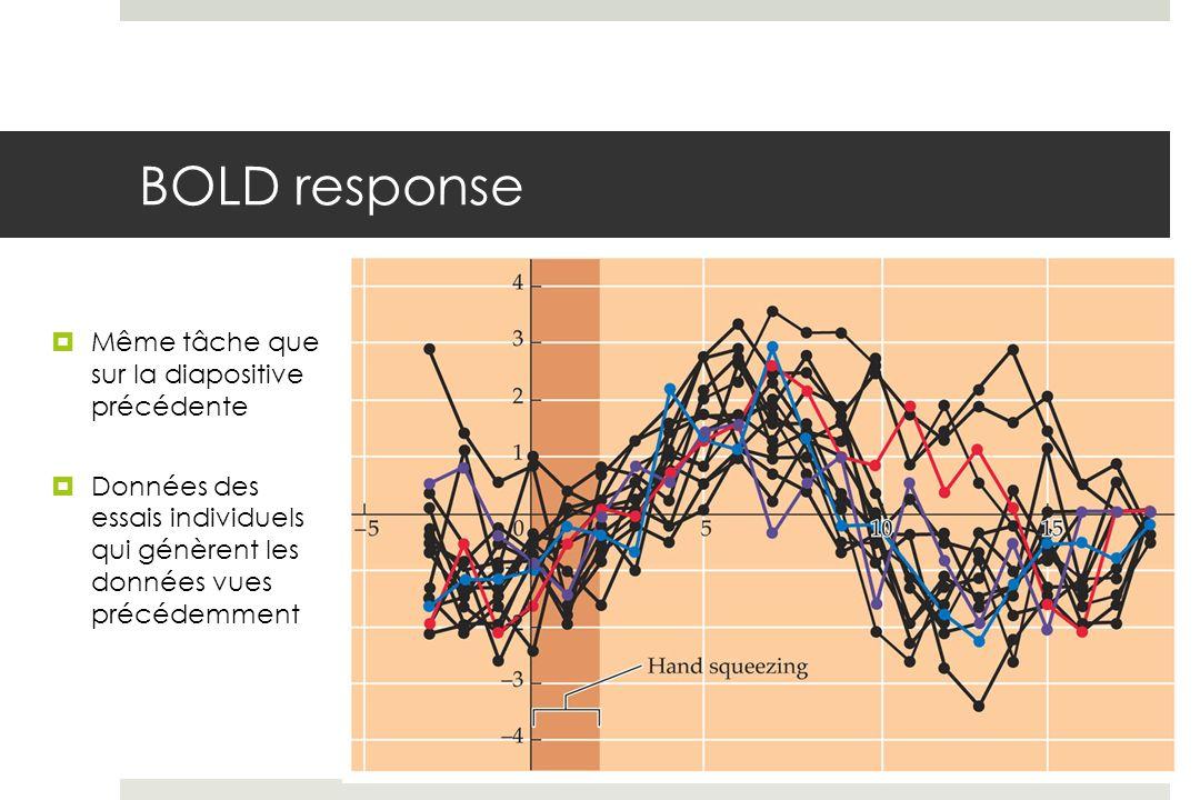 BOLD response Même tâche que sur la diapositive précédente