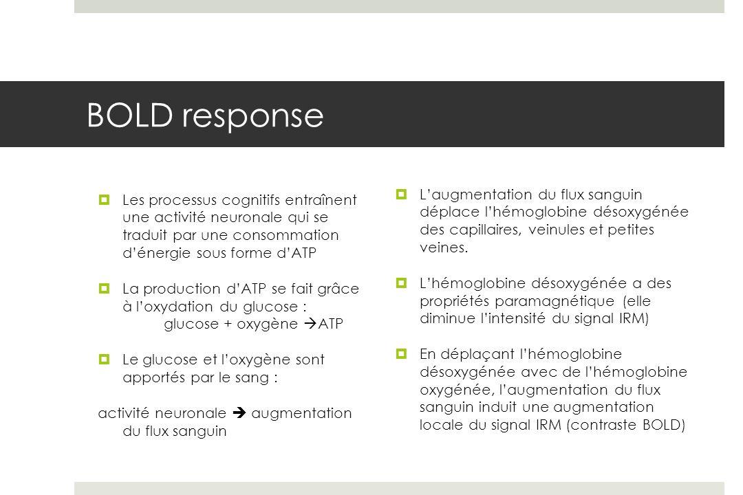 BOLD response L'augmentation du flux sanguin déplace l'hémoglobine désoxygénée des capillaires, veinules et petites veines.