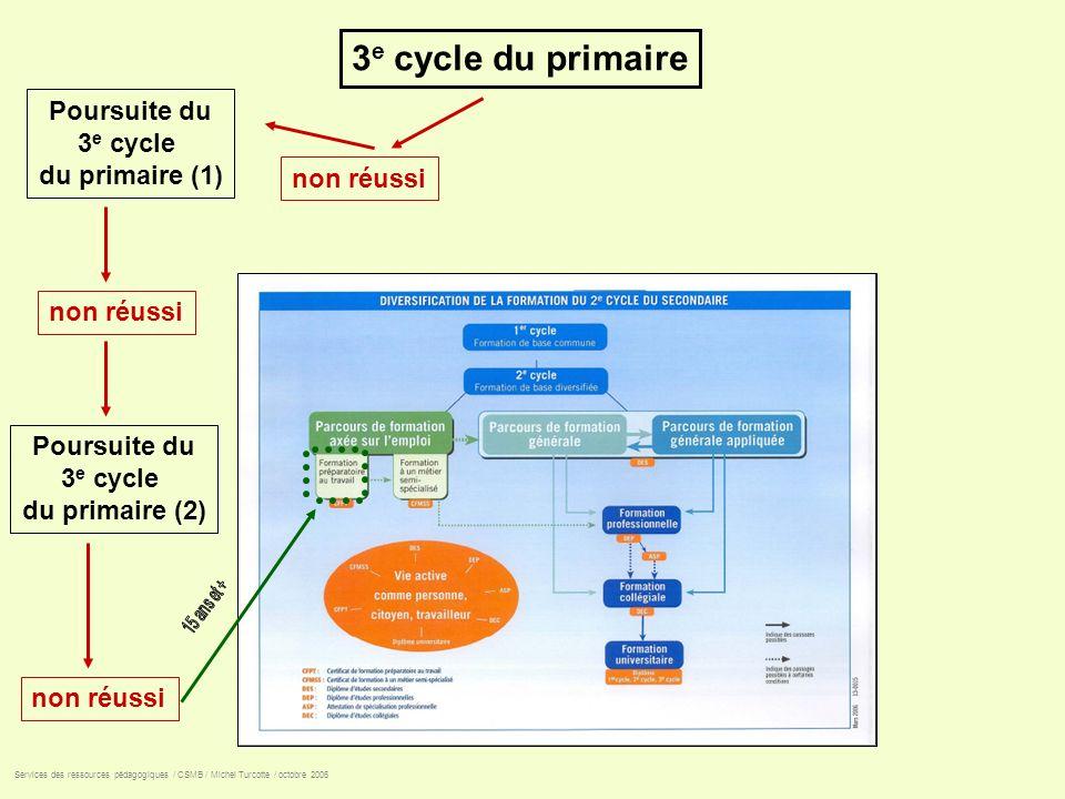 3e cycle du primaire Poursuite du 3e cycle du primaire (1) non réussi