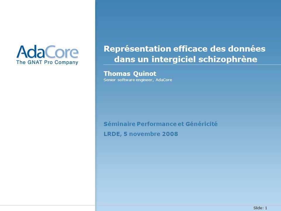 Représentation efficace des données dans un intergiciel schizophrène
