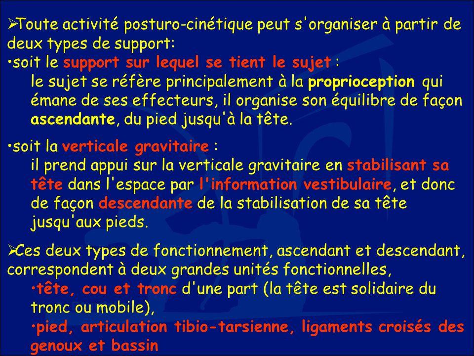 Toute activité posturo-cinétique peut s organiser à partir de deux types de support: