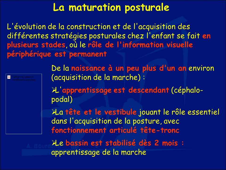 La maturation posturale