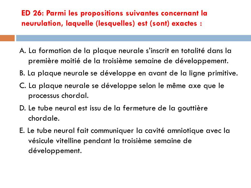 ED 26: Parmi les propositions suivantes concernant la neurulation, laquelle (lesquelles) est (sont) exactes :