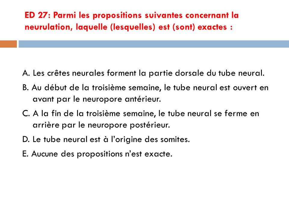 ED 27: Parmi les propositions suivantes concernant la neurulation, laquelle (lesquelles) est (sont) exactes :