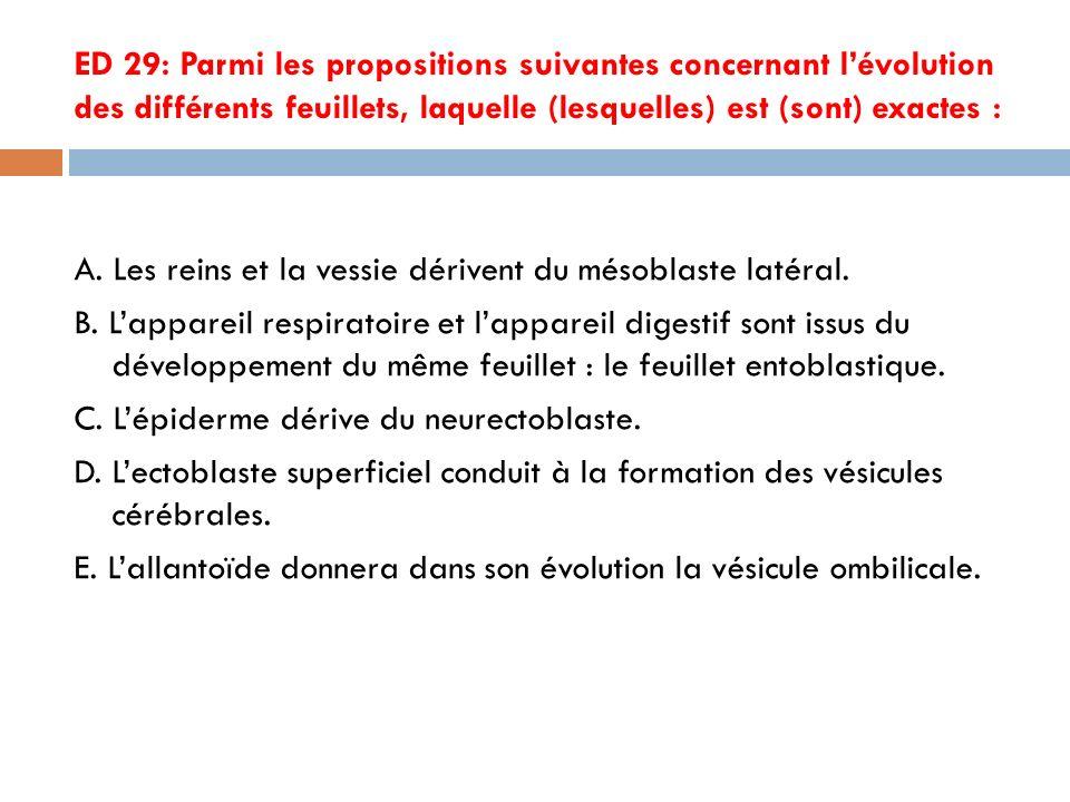 ED 29: Parmi les propositions suivantes concernant l'évolution des différents feuillets, laquelle (lesquelles) est (sont) exactes :