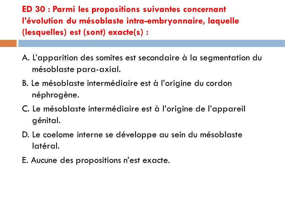 ED 30 : Parmi les propositions suivantes concernant l'évolution du mésoblaste intra-embryonnaire, laquelle (lesquelles) est (sont) exacte(s) :
