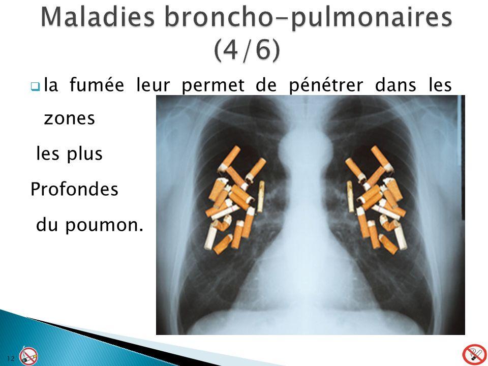 Maladies broncho-pulmonaires (4/6)