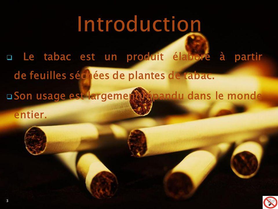 Introduction Le tabac est un produit élaboré à partir de feuilles séchées de plantes de tabac.