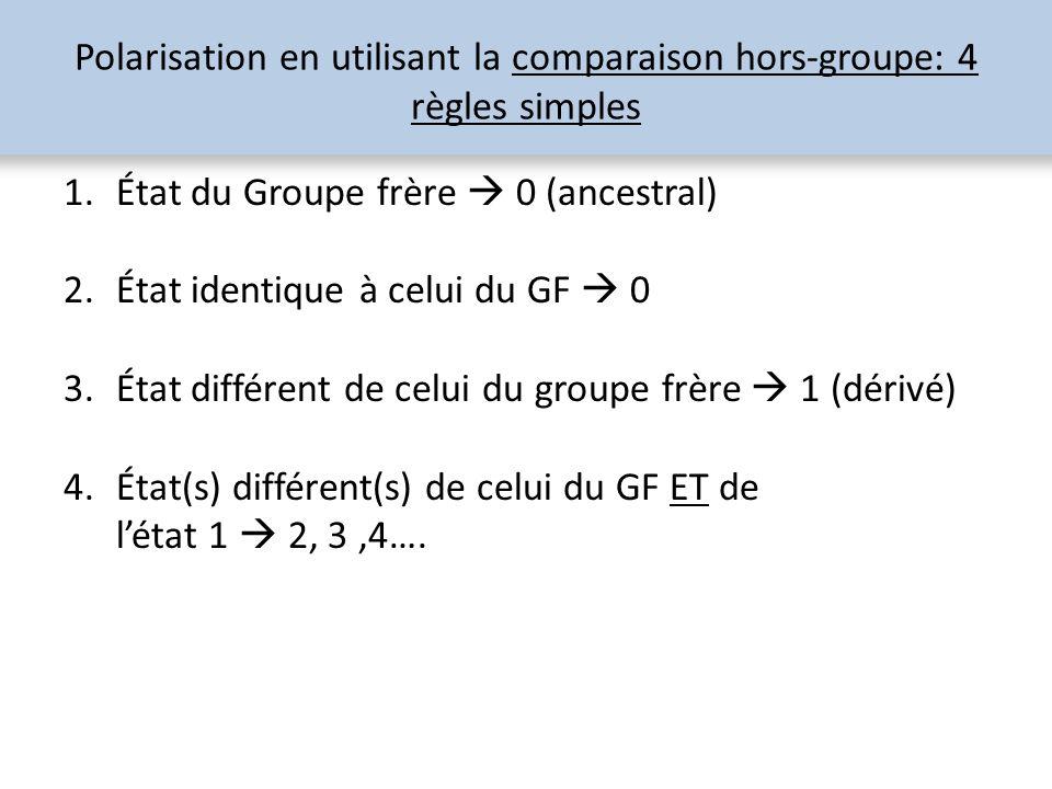 Polarisation en utilisant la comparaison hors-groupe: 4 règles simples