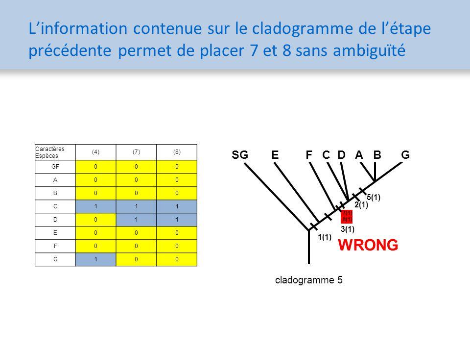 L'information contenue sur le cladogramme de l'étape précédente permet de placer 7 et 8 sans ambiguïté