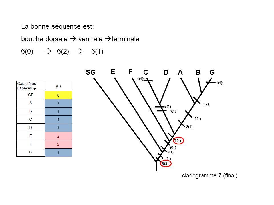 La bonne séquence est: bouche dorsale  ventrale terminale 6(0)  6(2)  6(1)