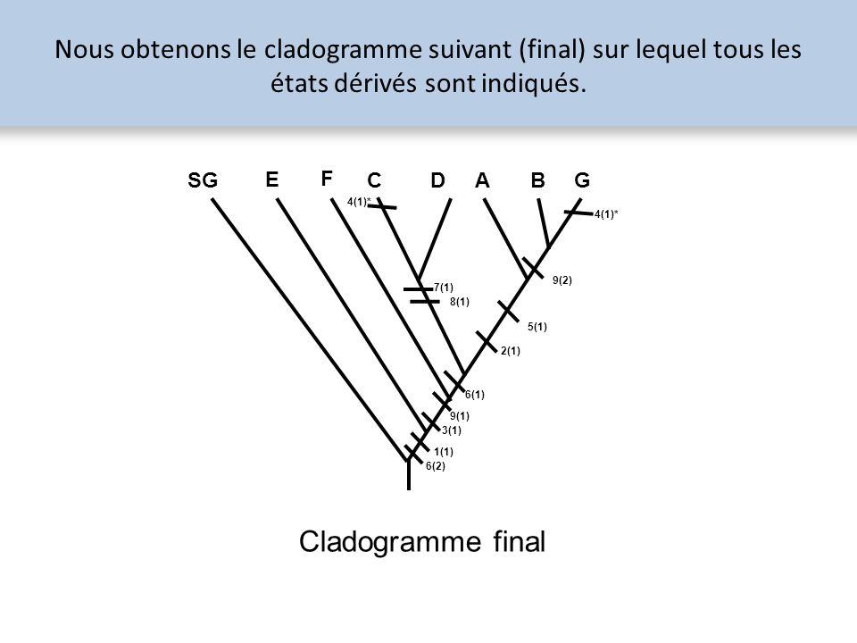 Nous obtenons le cladogramme suivant (final) sur lequel tous les états dérivés sont indiqués.