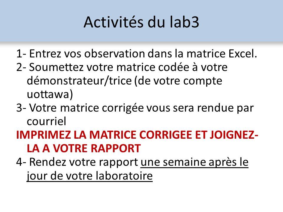 Activités du lab3 1- Entrez vos observation dans la matrice Excel.