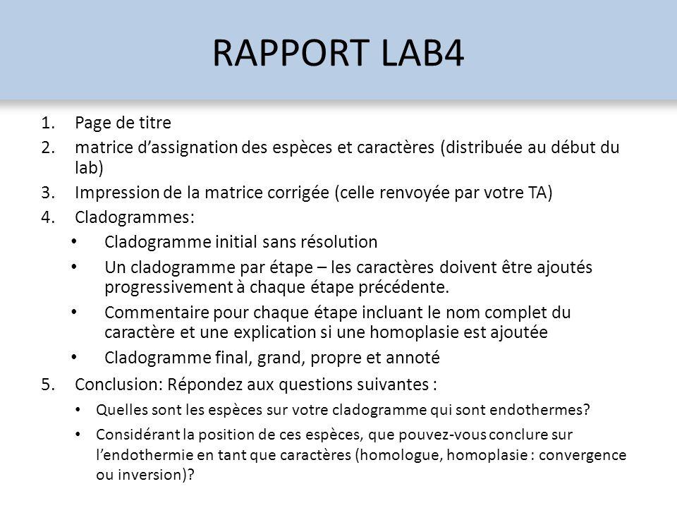 RAPPORT LAB4 Page de titre