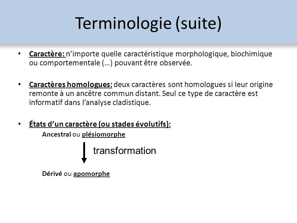 Terminologie (suite) transformation