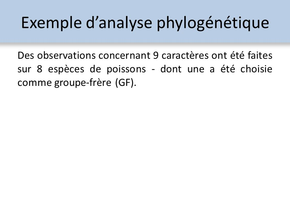 Exemple d'analyse phylogénétique
