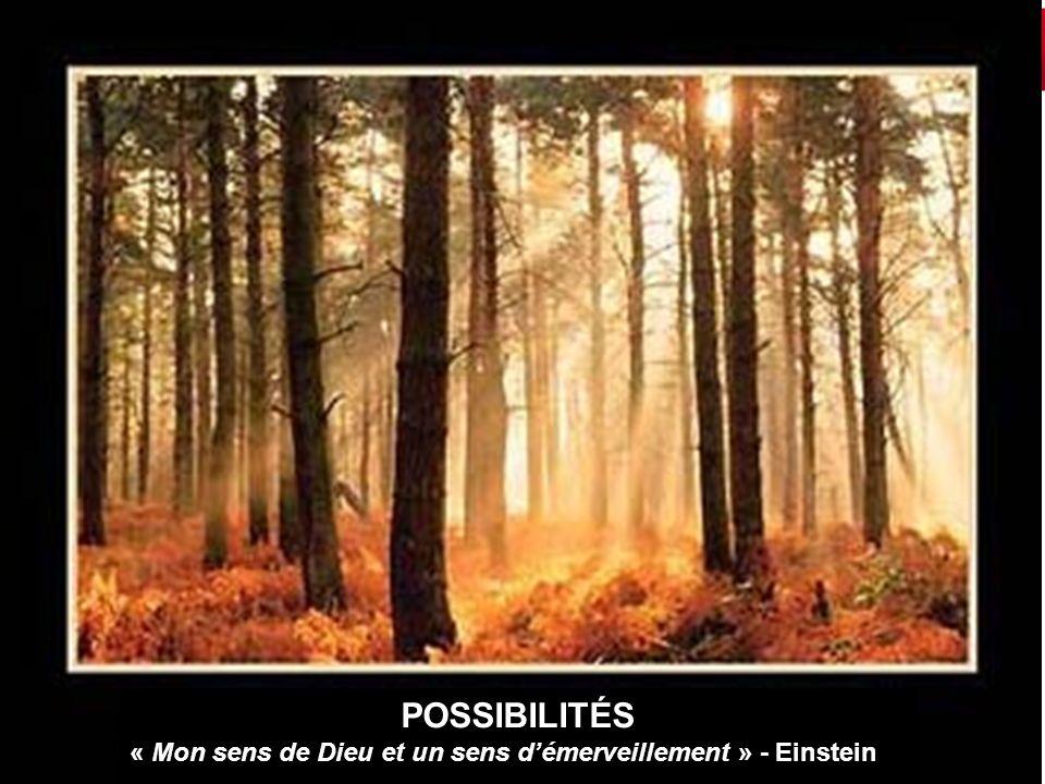 POSSIBILITÉS « Mon sens de Dieu et un sens d'émerveillement » - Einstein