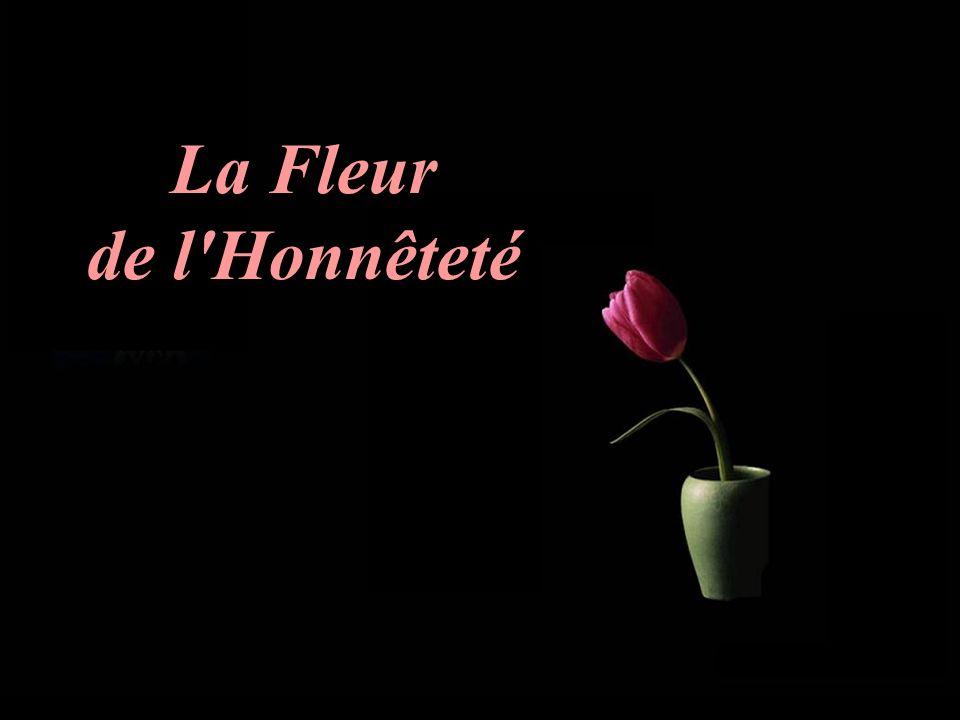 La Fleur de l Honnêteté